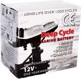 Аккумулятор Marine Deep Cycle AGM 100Ah 12V (6FM100D-X)